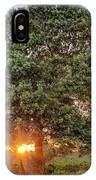 Oak At Sunset IPhone Case