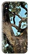 Oak Tree Two IPhone Case