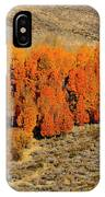 Oasis Of Beauty IPhone Case