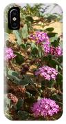 Ocotilla Wells Pink Flowers 2 IPhone Case