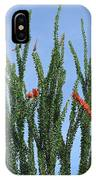 Ocotillo Plant  IPhone Case