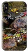 October Puddles IPhone Case
