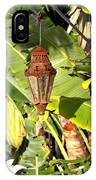 Of Lanterns And Lawn Chairs IPhone Case