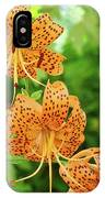 Office Art Prints Tiger Lilies Flowers Nature Giclee Prints Baslee Troutman IPhone Case