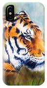 Oil Painting Of A Bright Mighty Tiger Head On A Soft Toned Abstr IPhone Case