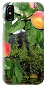 Okanagan Apricots IPhone Case