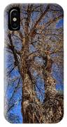 Old Cottonwood IPhone Case