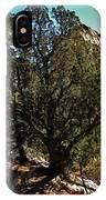 Old Juniper IPhone Case