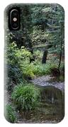 Old Mill Park In Mill Valley IPhone Case