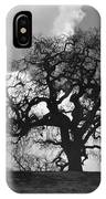 Old Oak Against Cloudy Sky IPhone Case