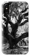 Old Plantation Tree IPhone Case
