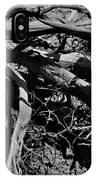Old Sagebrush IPhone Case