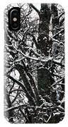 Old Tree 5 IPhone Case