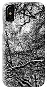 Old Tree 6 IPhone Case