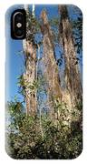 Old Tress  IPhone Case