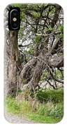 Old Weathered Tree IPhone Case