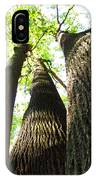 Oldgrowth Tulip Tree IPhone Case