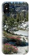 Olmsted Down The Road View IPhone Case