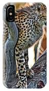 One Little Cheetah Sitting In A Tree IPhone Case