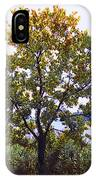 One Tree Hudson River View IPhone Case