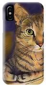 Orange Cave IPhone Case