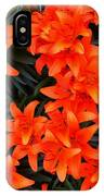 Orange Lilies Vignette IPhone Case