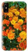 Orange Margarita Daisy IPhone Case