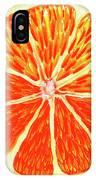 Orange Slice IPhone Case