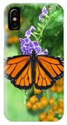 Orange Splendour IPhone Case