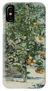 Orange Trees And Gate IPhone Case