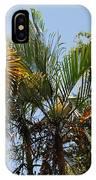 Orange Trees IPhone Case