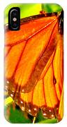 Orange Winged Butterfly IPhone Case