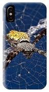 Orb-weaver Spider IPhone Case