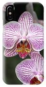 Orchid 22 IPhone Case