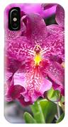 Orchid Aliceara Marfitch IPhone Case