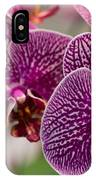 Orchid Ascda Laksi IPhone Case