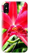 Orchid Cattlianthe Hybrid IPhone Case