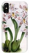Orchid, O. Alexandrae Plumatum, 1891 IPhone Case