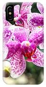 Orchid Phalaenopsis Carnival Bonsall IPhone Case