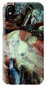 Oregon Beach Treasures #2 IPhone Case