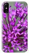 Ornamental Allium IPhone Case