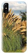 Ornamental White Pampas Grass-1 IPhone Case