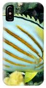 Ornate Butterflyfish IPhone Case