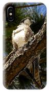 Osprey Hunting IPhone Case