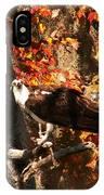 Osprey In Fall IPhone Case