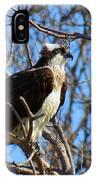 Osprey In Spring IPhone Case