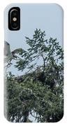 Osprey Reinforcing Its Nest 2017 IPhone Case