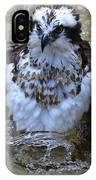 Osprey Splashing In Water IPhone Case