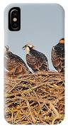 Osprey Young IPhone Case