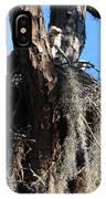 Ospreys In Spanish Moss Nest IPhone Case